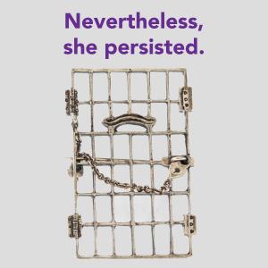 jail-door-pin-homepage